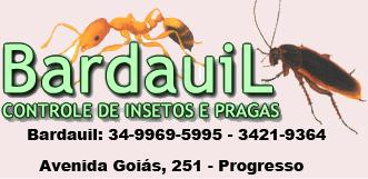 Bardauil