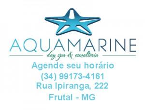 aquamarinewidget2