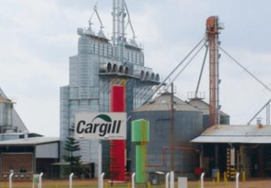 Programa de Trainee da Cargill está com inscrições abertas