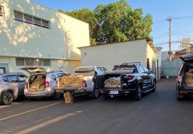 Cerca de três toneladas de maconha são apreendidas na zona rural de Campo Florido